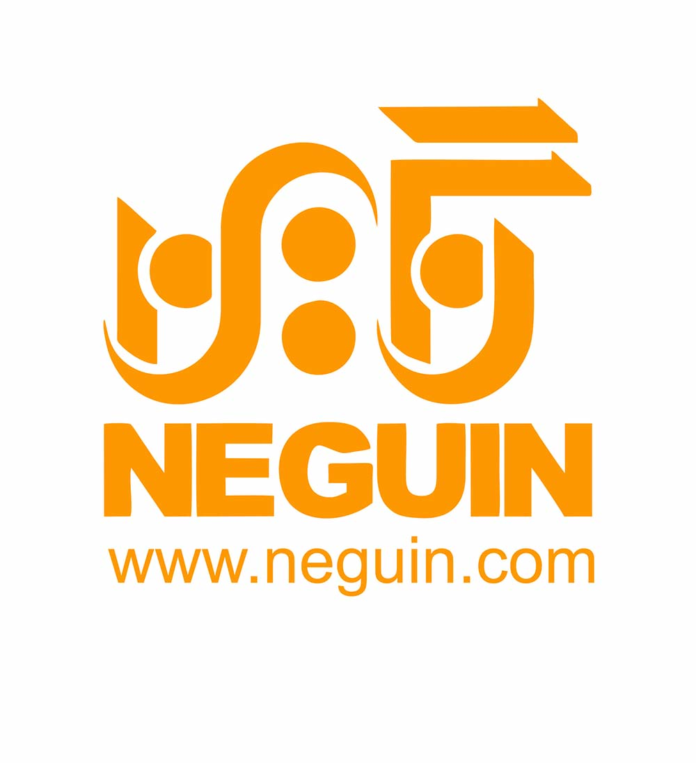 neguin group of companies